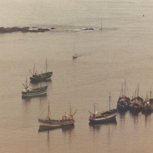 The Estuary Tales Show